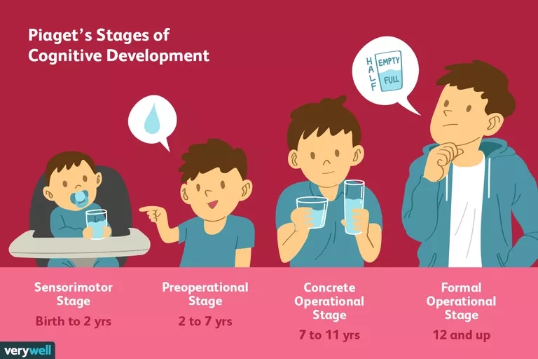 2795457-article-piagets-stages-of-cognitive-development-5a95c43aa9d4f900370bf112.png