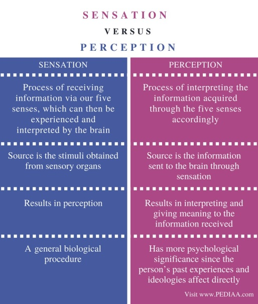 Difference-Between-Sensation-and-Perception-Comparison-Summary.jpg